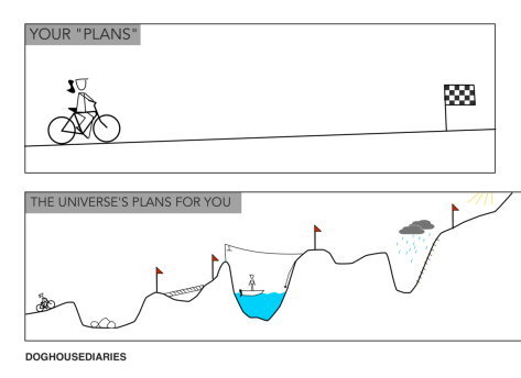 25 Plans-vs.-Reality.png